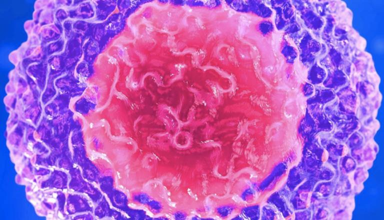 HTLV 1 - вирус Т-клеточного лейкоза человека